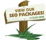 SEO Packages Delhi